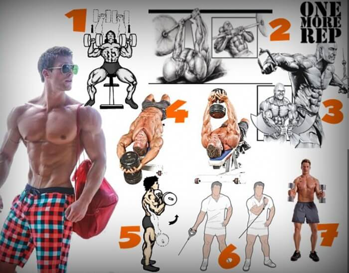 complex exercises