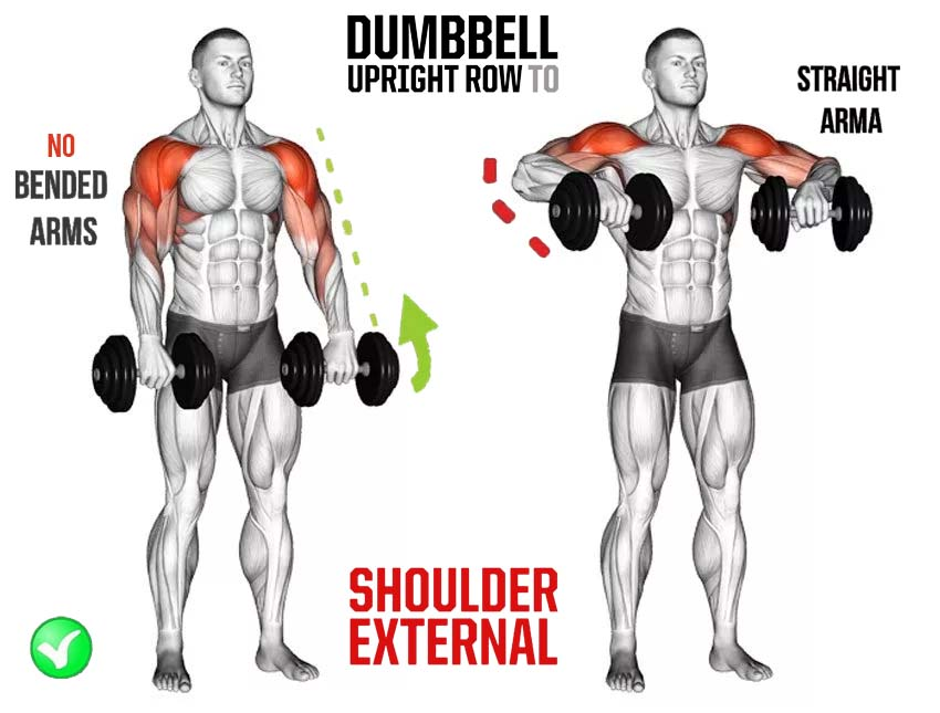 Upright Dumbbell Row