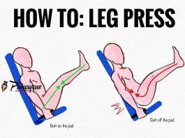 Legs press exercises
