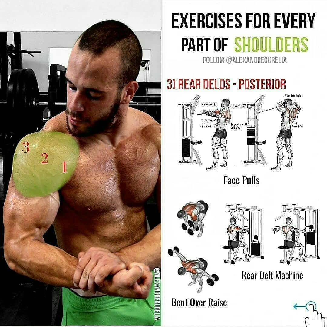 shoulder exercises