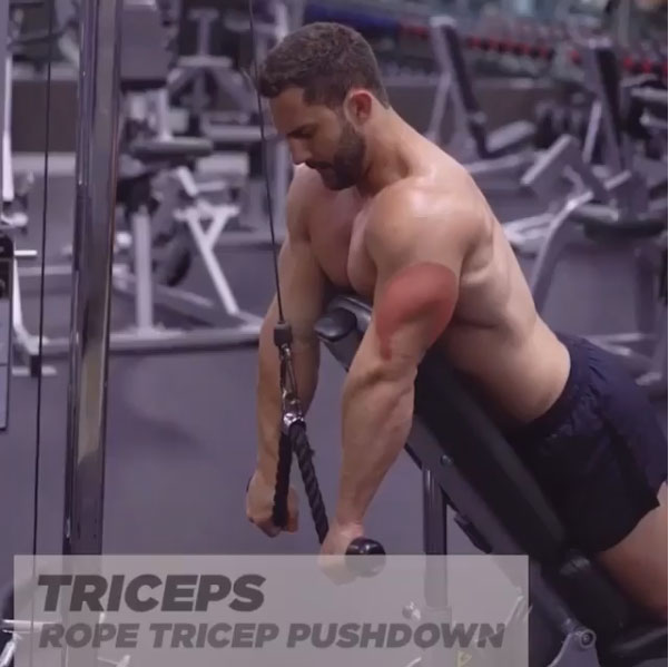 Triceps push cable