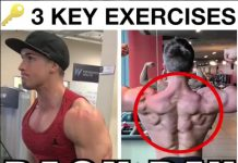 3 Key Exercises For Back Day