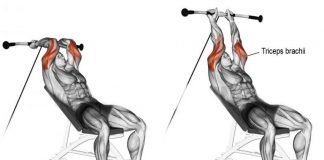 How to Cable Machine Tricep Overhead Extensions