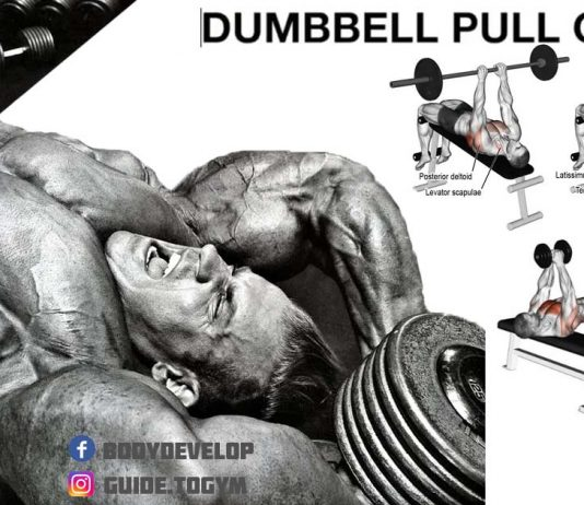 how to dumbbell pull-over