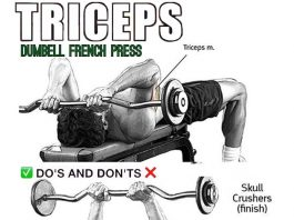 Barbell french press