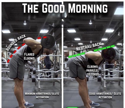 How to Good Mornings Proper Form