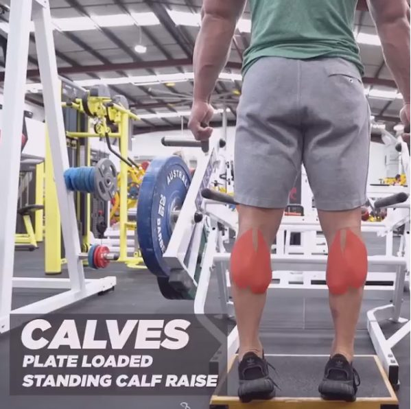 How to Calf Raise Plate Loaded Variation