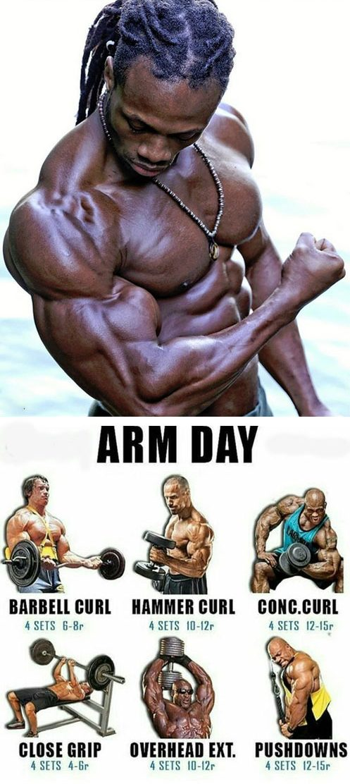 Biceps is a small muscle - that is responsible for flexion, extensor and rotating functions.