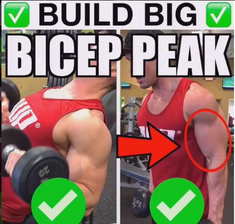 How to Make Biceps Peacks
