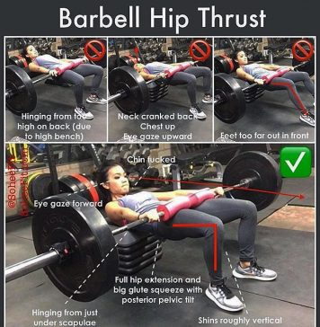 The Barbell Hip-Thrust exercises