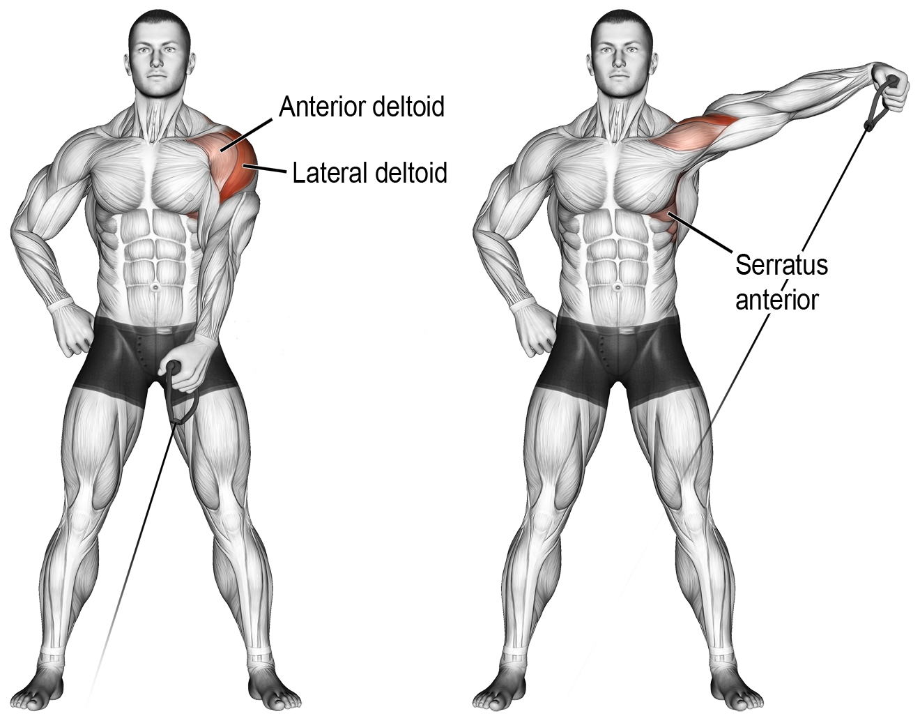 Single-Arm Dumbbell Lateral Raises
