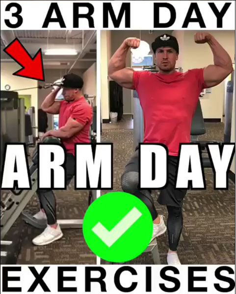 How to 3 Arm Exercises - Arm Day
