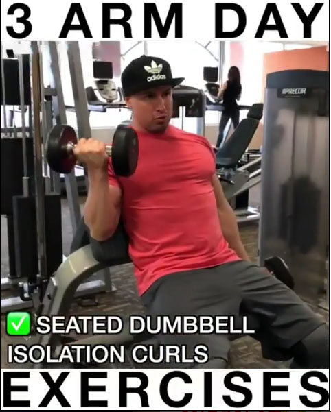 Seated Dumbbell Isolation Curls
