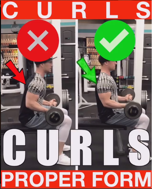 How to Seated Bicep Curls