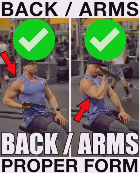 How to Back & Bicep Exercise Proper Form