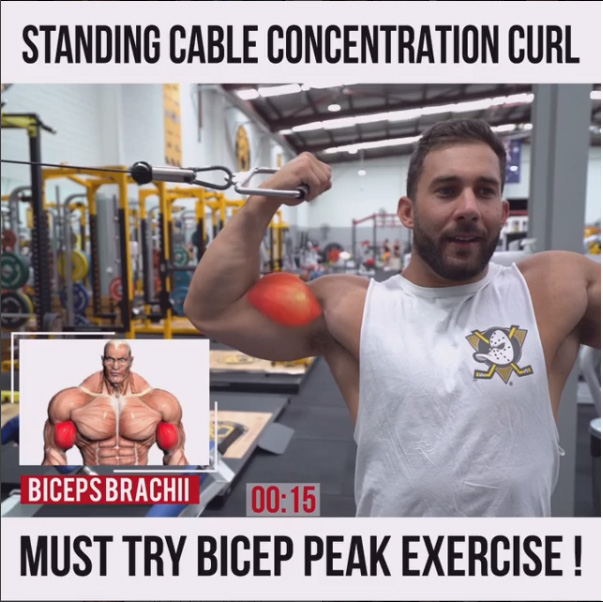How To CABLE CONCENTRATION CURL