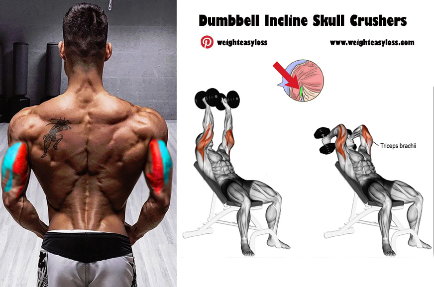 Dumbbell Incline Skull Crushers