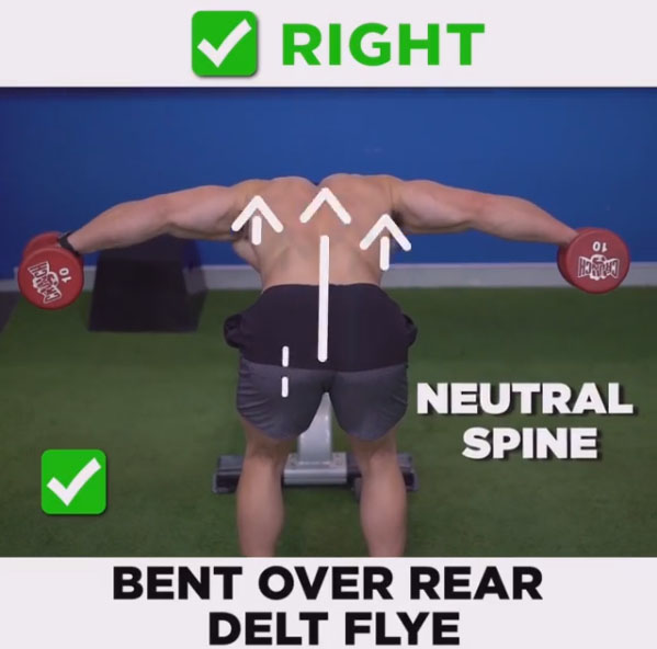 How to Bent Over Rear Delt Flye- Right