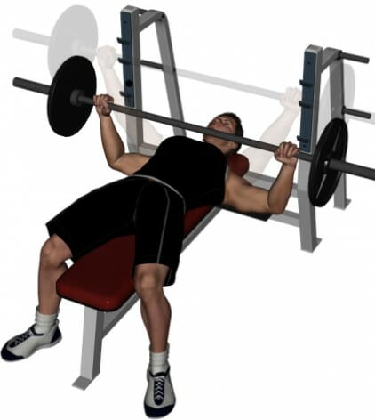 Technique of execution Chest Press