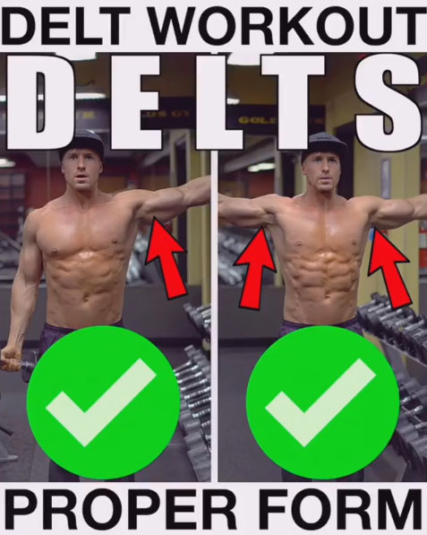 Lateral Delt Exercise