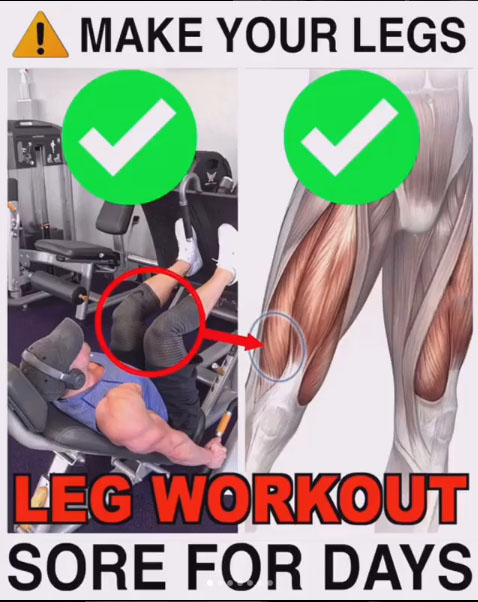 FULL LEG WORKOUT