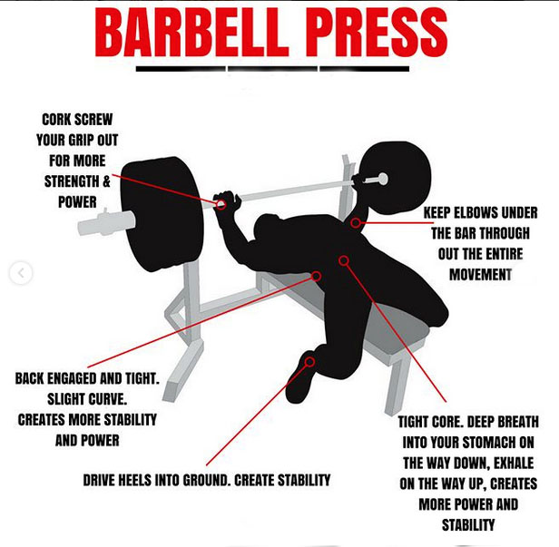 Difference Between BARBELL PRESS&DUMBBELL PRESS