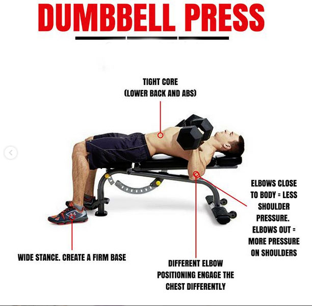 What Is The Difference Between Using A Barbell Or A: BARBELL PRESS & DUMBBELL PRESS