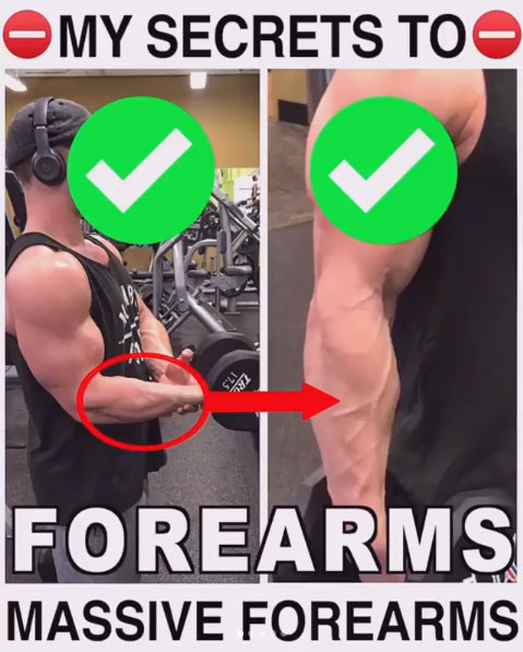 MY SECRETS TO FOREARMS MASSIVE FOREARMS