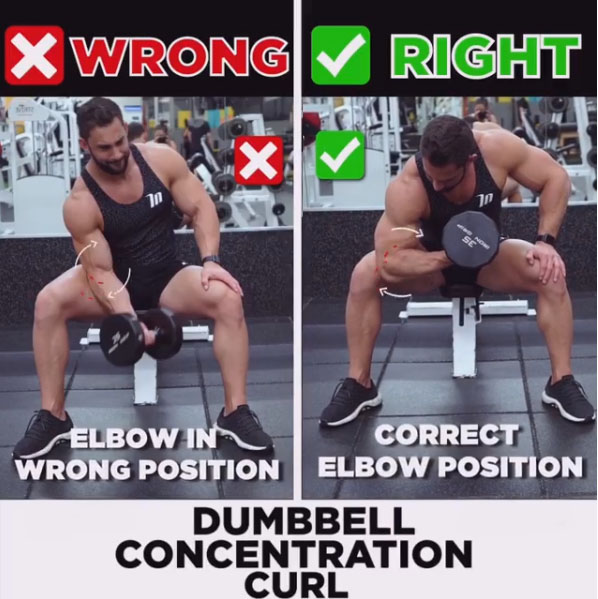 🚨DUMBBELL CONCENTRATION CURL ❌WRONG &✅RIGHT