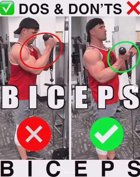 Cable Hammer - Biceps Exercises