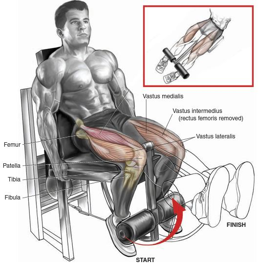"Leg Extensions ""Bad"" for Your Knees?"