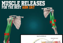 Muscle Releases for Your Arm Day