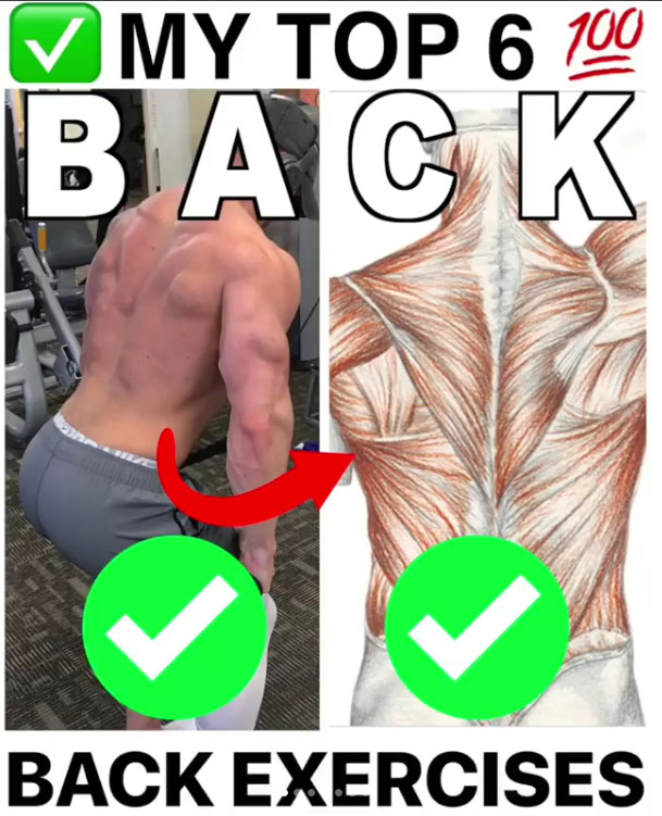 TOP BACK EXERCISES!