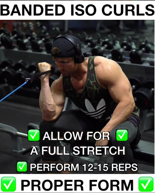 Banded Isolation Bicep Curls Proper Technique