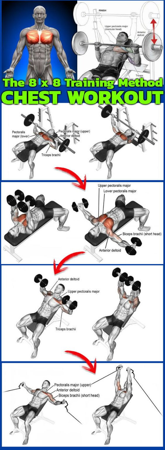 The 8x8 Training Method Chest WorkOut