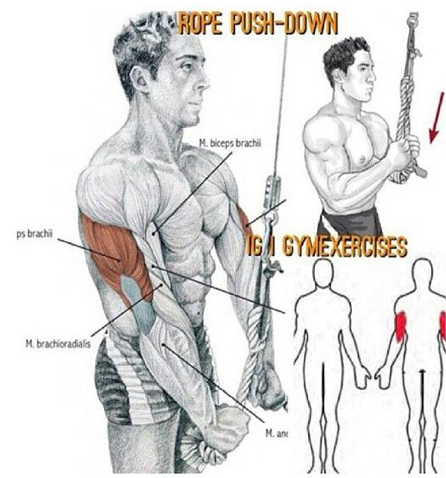 Rope Push-Dow
