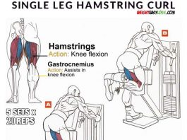 Single-Leg What is Standing Hamstring Curl Training ?
