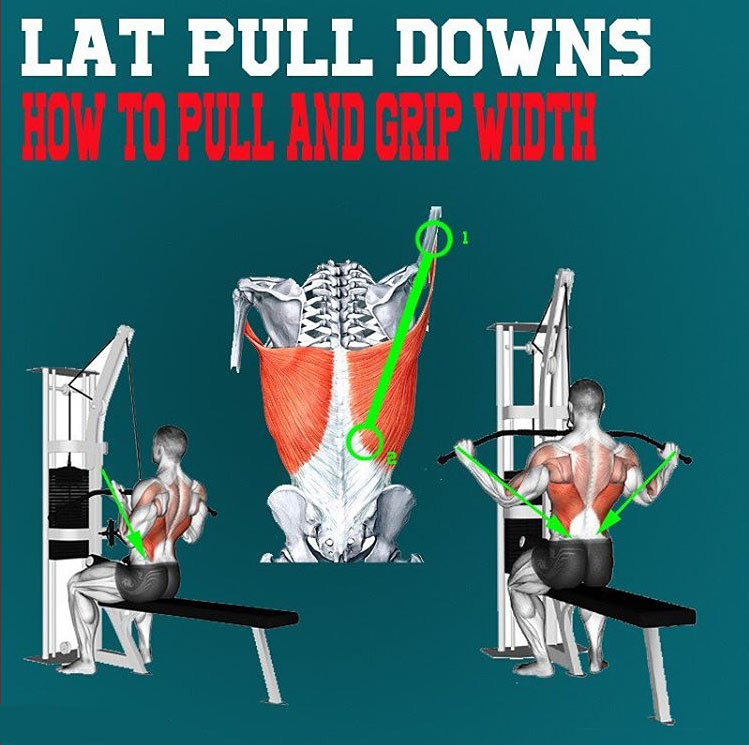 LAT PULL DOWN BAR PATH AND GRIP