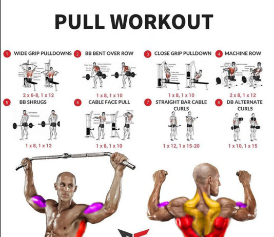 PULL WORKOUT EXERCISES