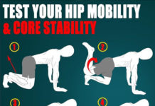 hip mobility and core stability