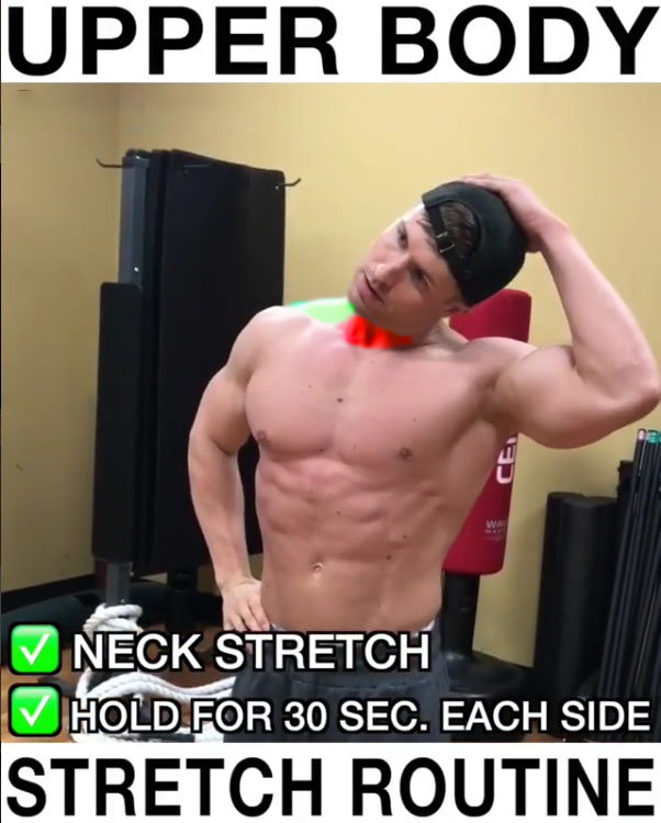 ✅Neck Stretch