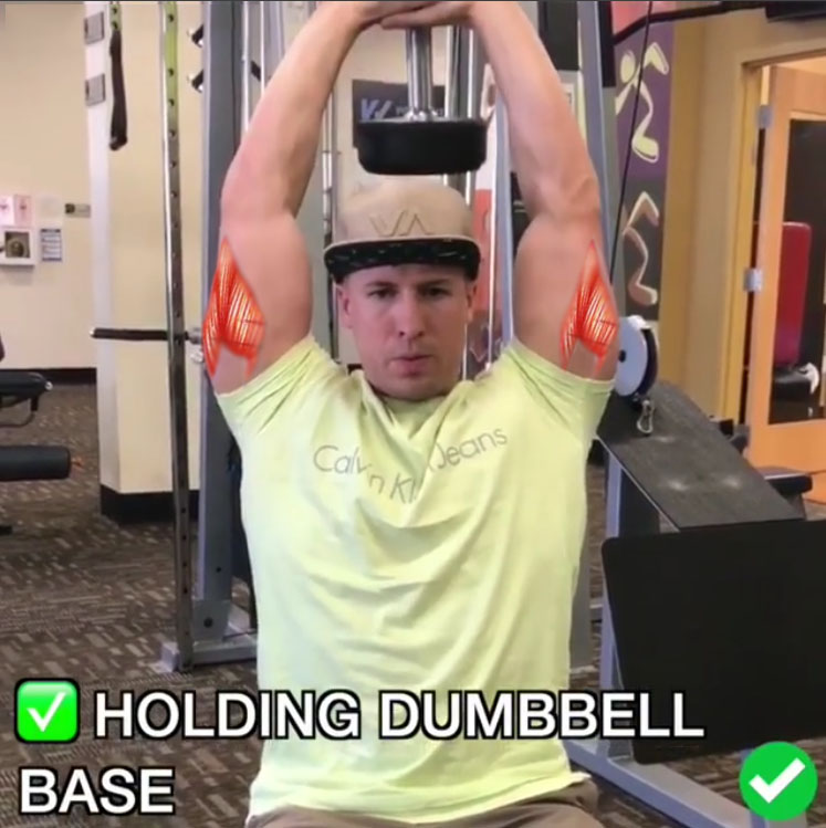 DB Tricep Overheads