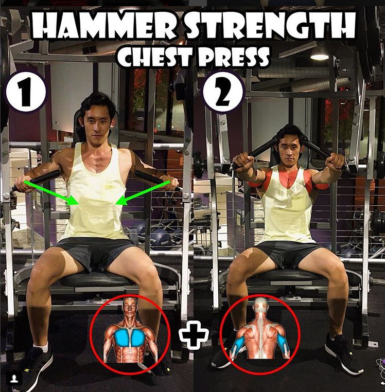 Hammer Strength Chest Press Machine