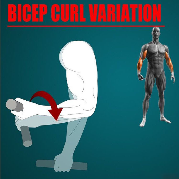 SUPINATION CURL VARIATION