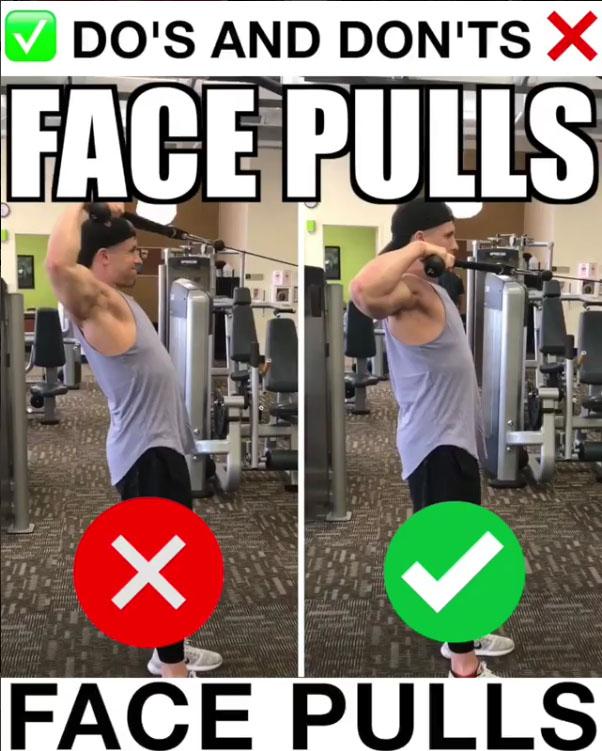 🚨Face Pulls Proper Form🚨