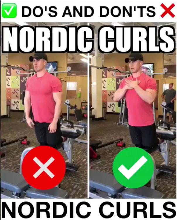 Nordic Curls Proper Form