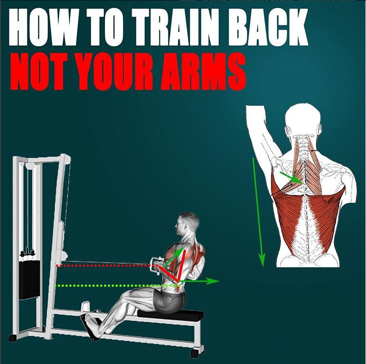 🔥TRAIN YOUR BACK NOT YOUR ARMS👇