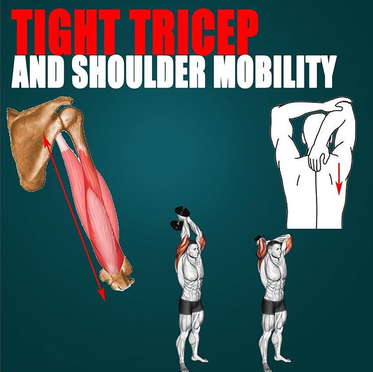 🔥 TIGHT TRICEPS AND SHOULDER MOBILITY 👇