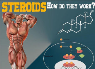 STEROIDS, HOW DO THEY WORK