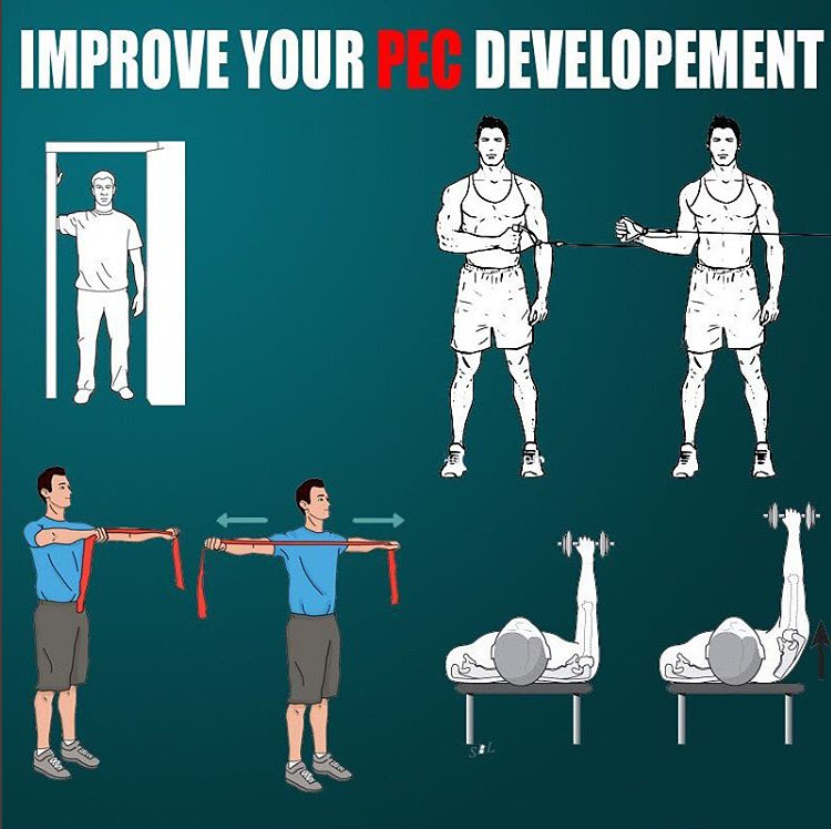 FIX YOUR PEC DEVELOPMENT